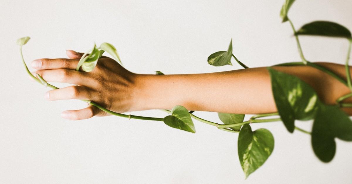 EBD Greenwashing blog by Roberta Lee