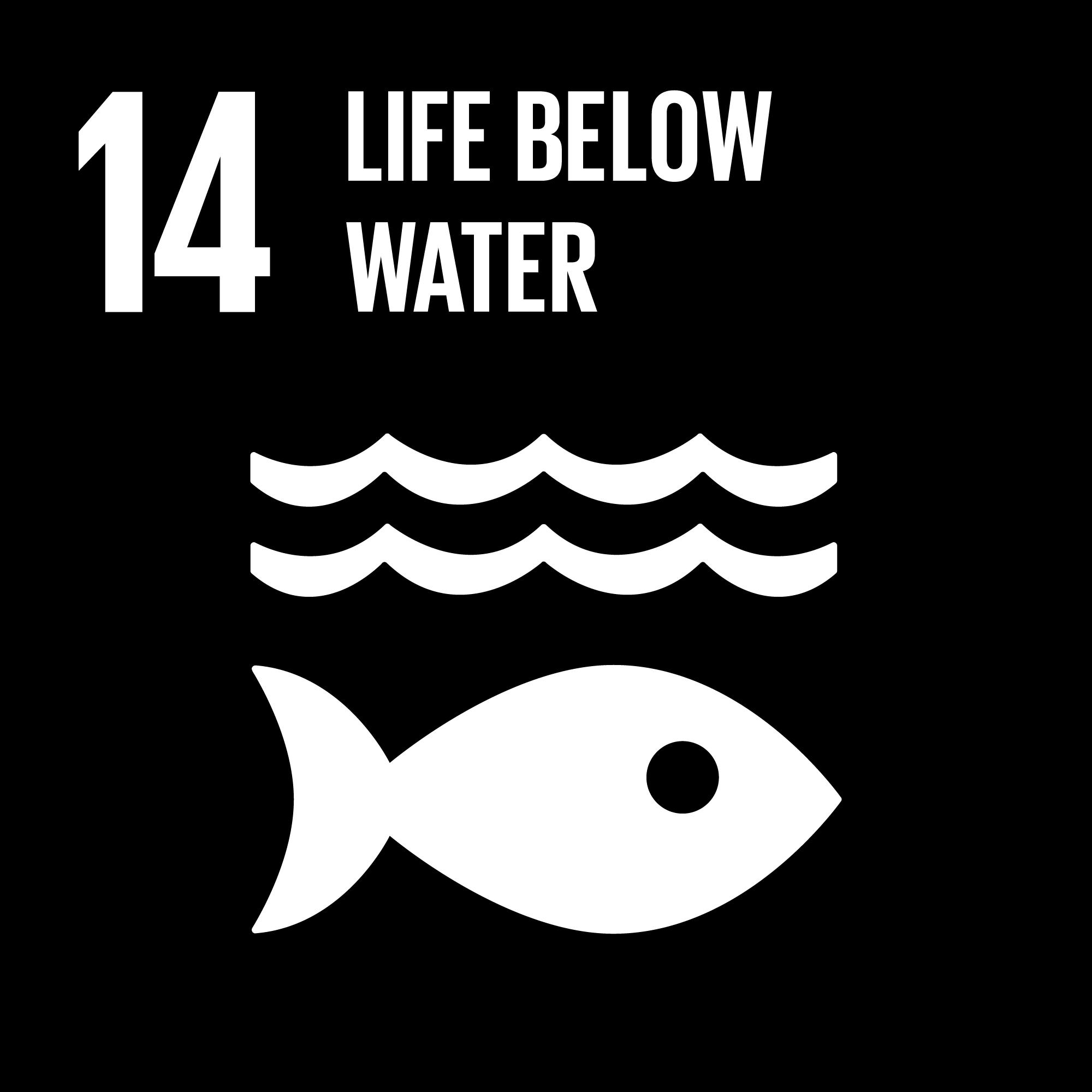 Sustainable Development Goals - 14 - Life Below Water