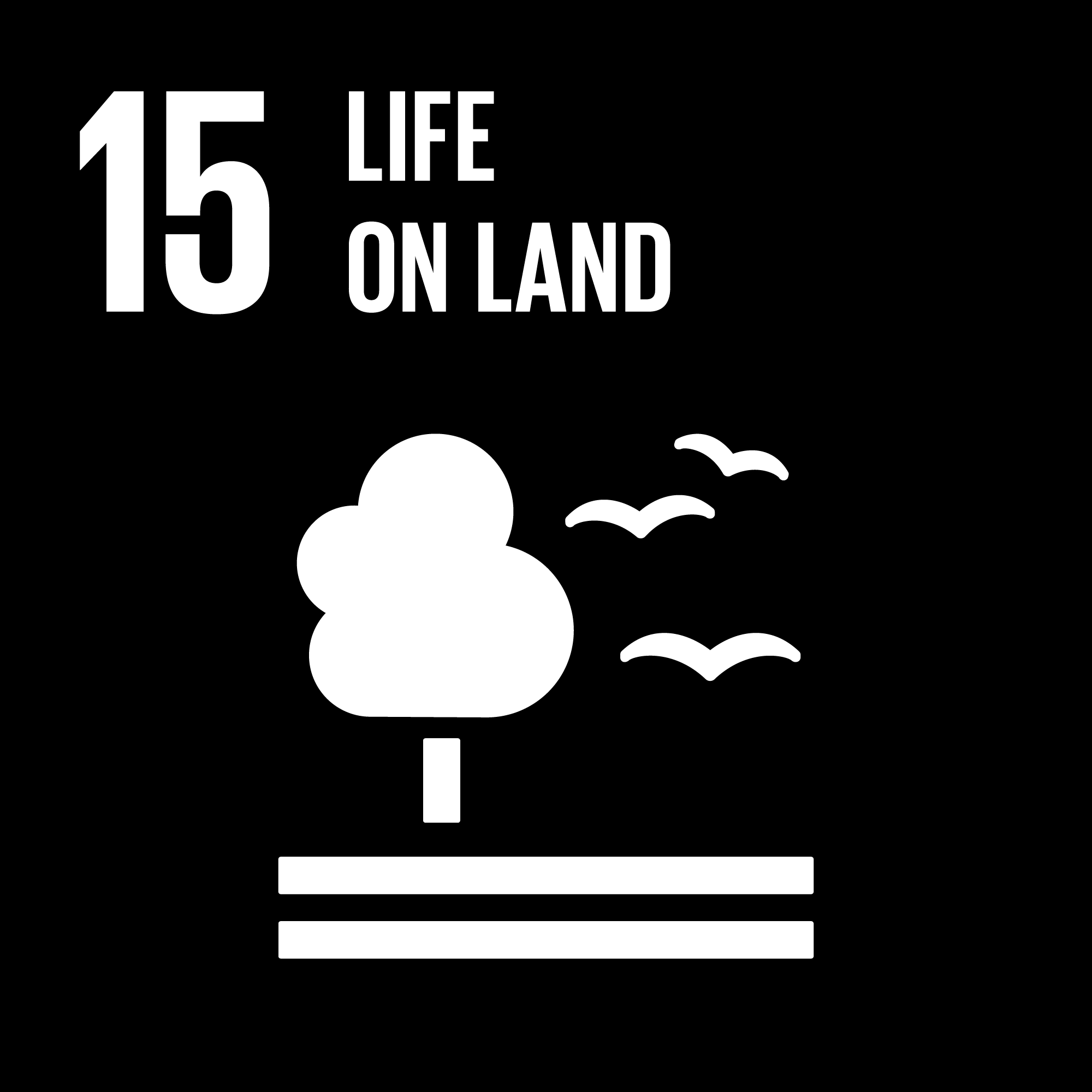 Sustainable Development Goals - 15 - Life on Land