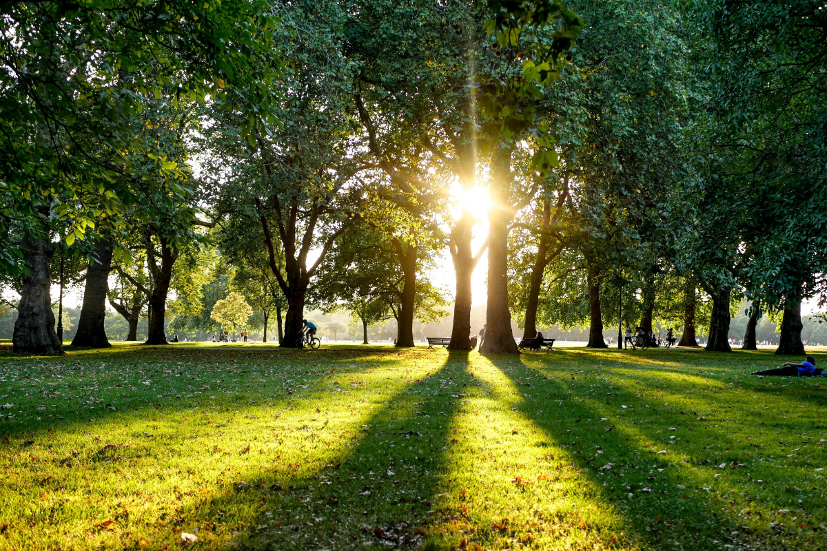 Best Parks in London for Outdoor Socialising + Fitness