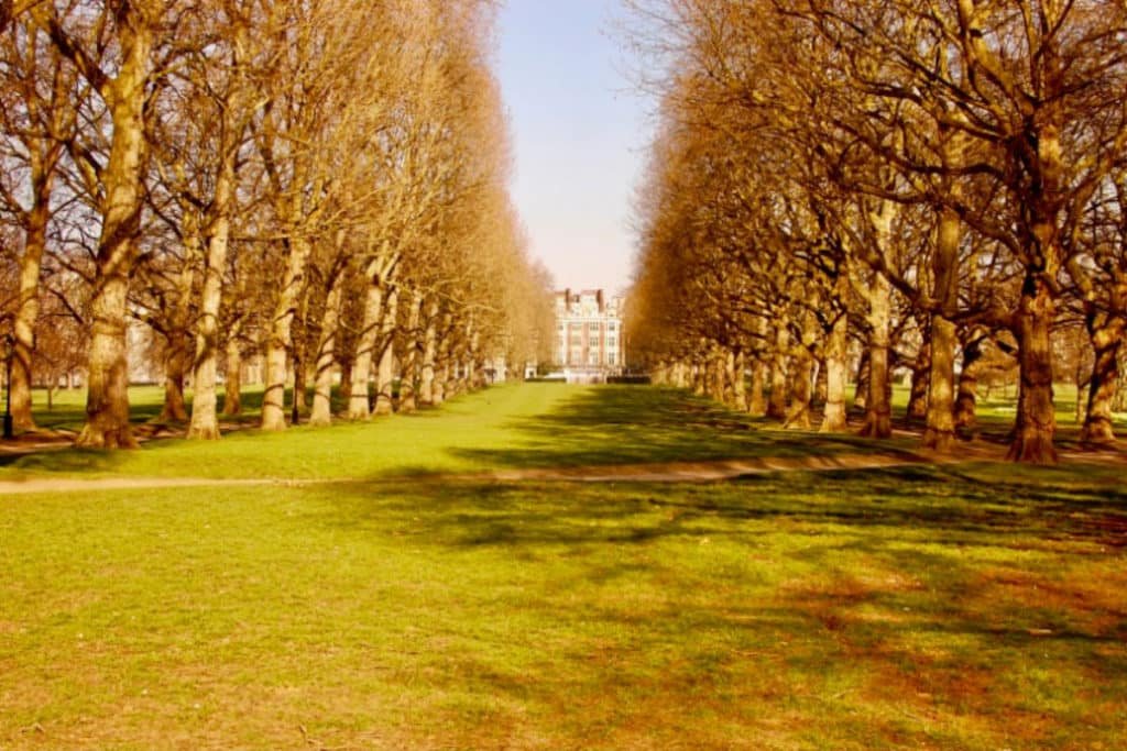Green Park   Ethical Brand Directory Blog   Best Parks in London for Outdoor Socialising