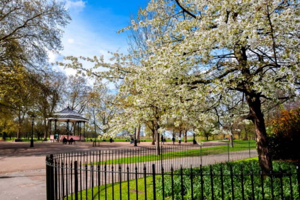Ethical Brand Directory Blog   Best Parks in London for Outdoor Socialising   Hyde Park